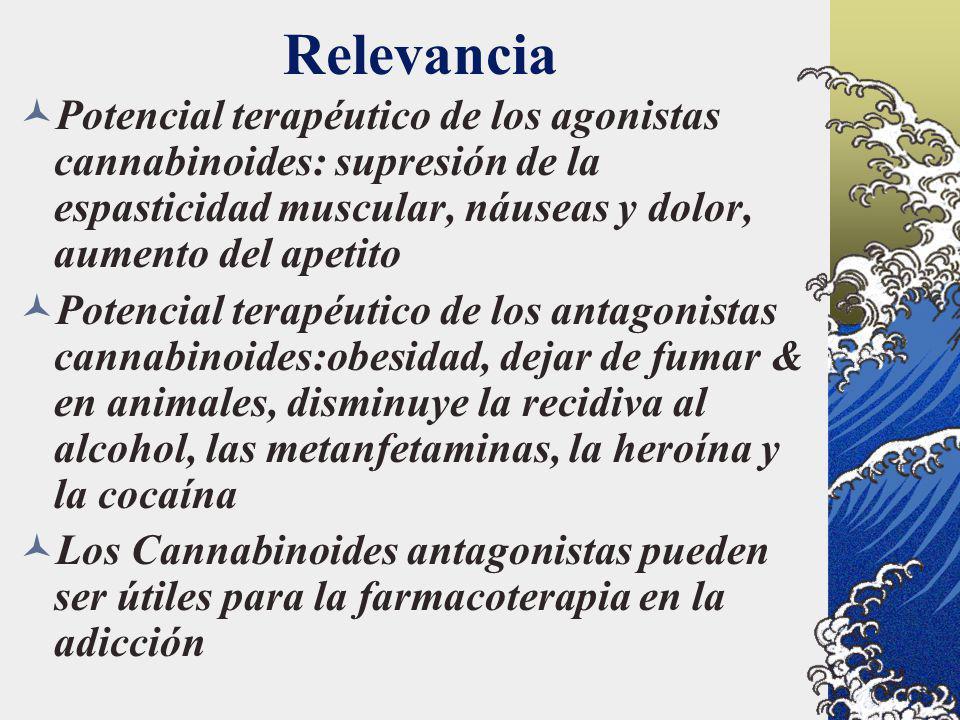 Relevancia Potencial terapéutico de los agonistas cannabinoides: supresión de la espasticidad muscular, náuseas y dolor, aumento del apetito.