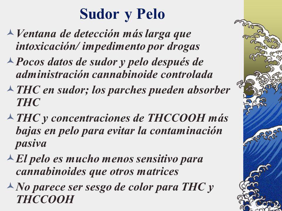 Sudor y Pelo Ventana de detección más larga que intoxicación/ impedimento por drogas.