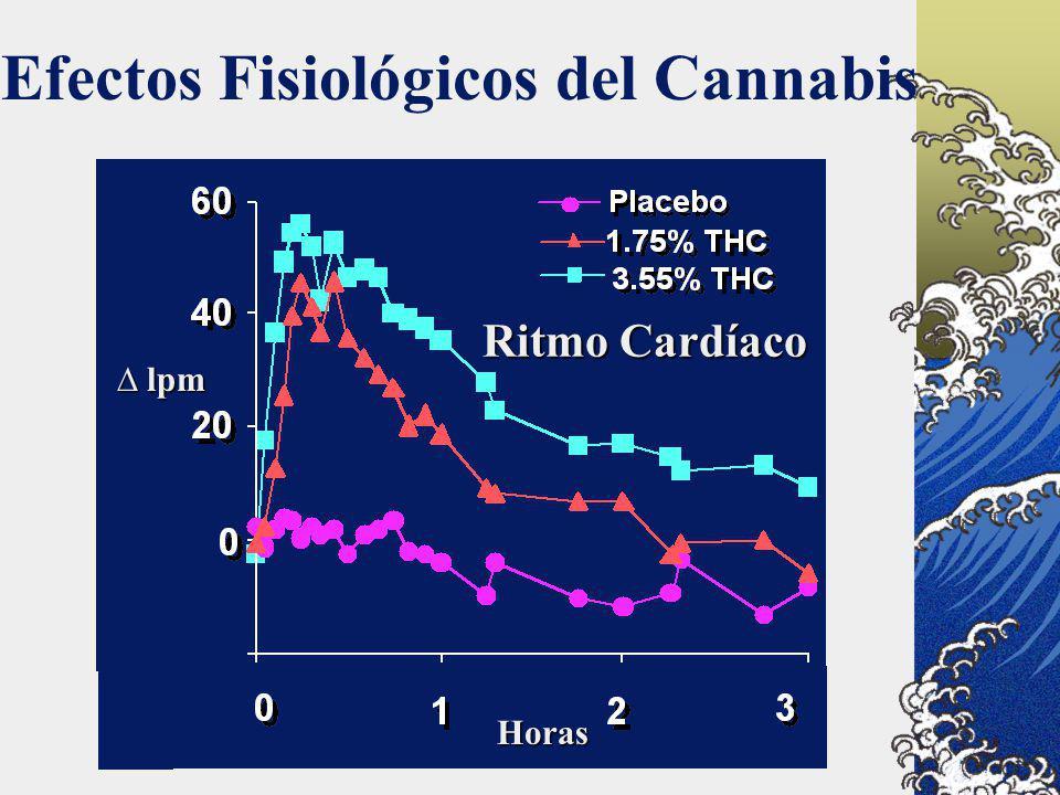 Efectos Fisiológicos del Cannabis