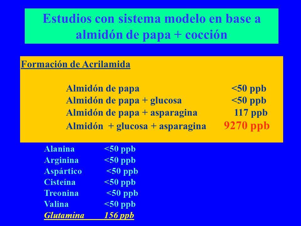 Estudios con sistema modelo en base a almidón de papa + cocción