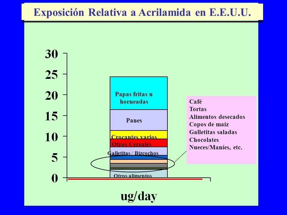 Exposición Relativa a Acrilamida en E.E.U.U.