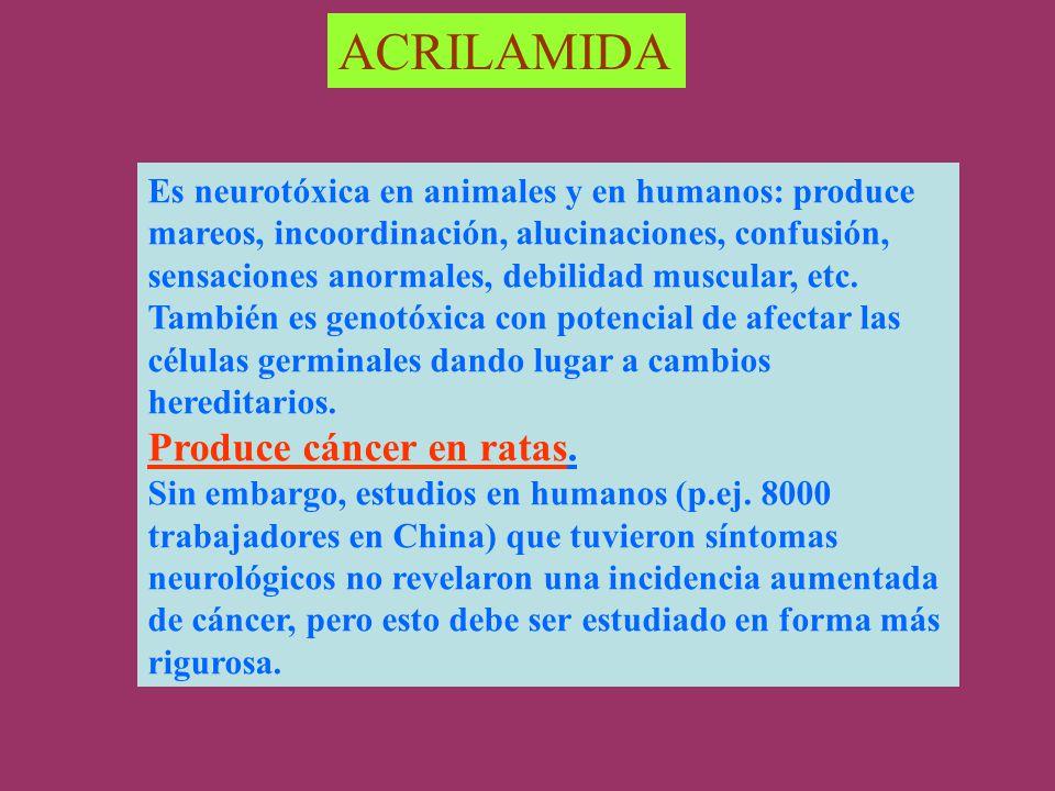 ACRILAMIDA Produce cáncer en ratas.