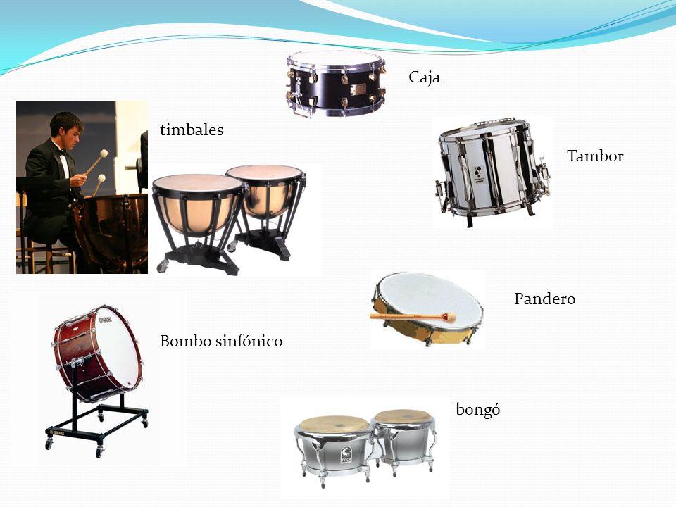 Caja timbales Tambor Pandero Bombo sinfónico bongó
