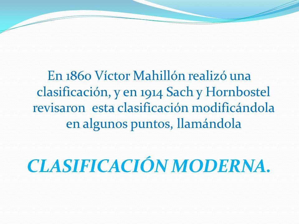 CLASIFICACIÓN MODERNA.