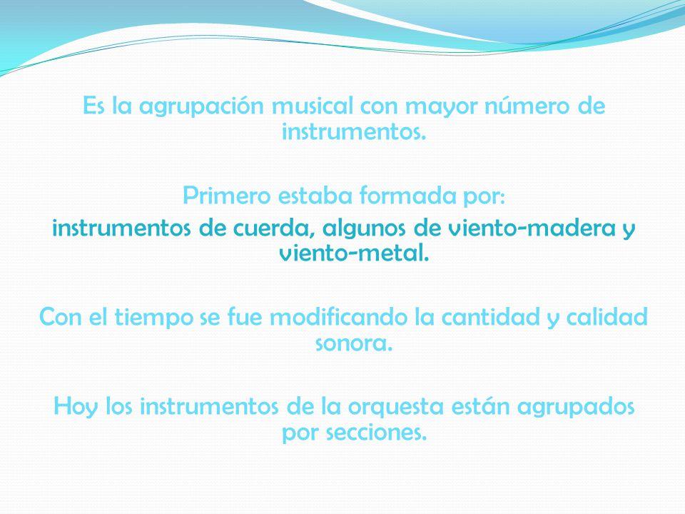 Es la agrupación musical con mayor número de instrumentos