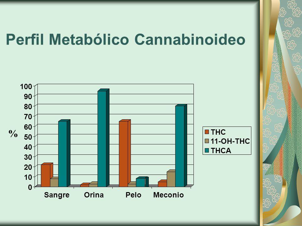 Perfil Metabólico Cannabinoideo