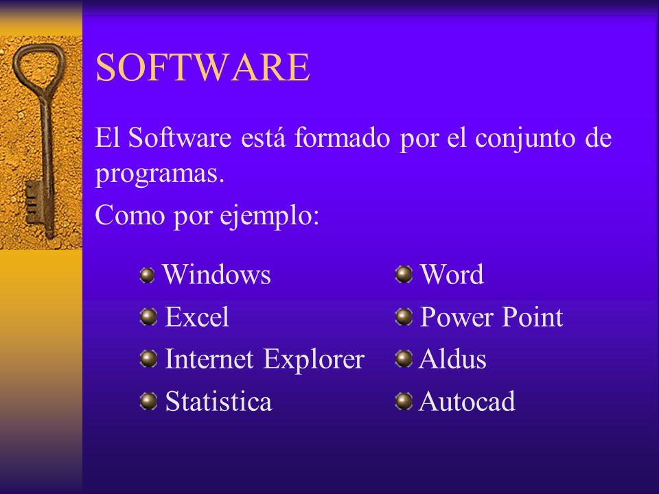 SOFTWARE El Software está formado por el conjunto de programas.