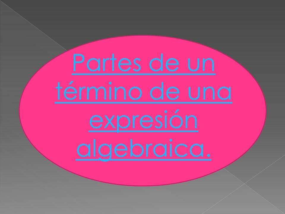 Partes de un término de una expresión algebraica.