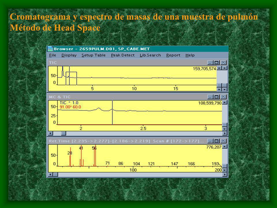 Cromatograma y espectro de masas de una muestra de pulmón