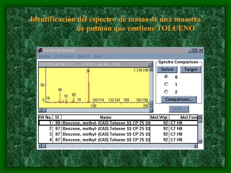 Identificación del espectro de masas de una muestra de pulmón que contiene TOLUENO