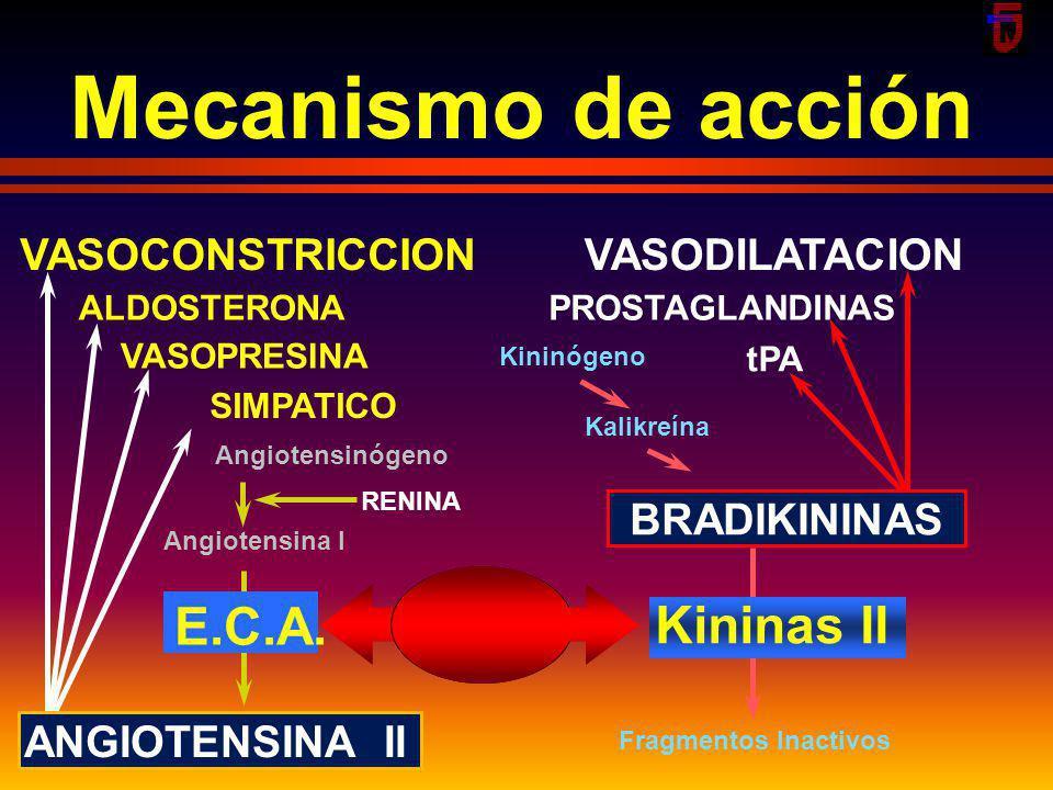 Mecanismo de acción E.C.A. Kininas II VASOCONSTRICCION VASODILATACION