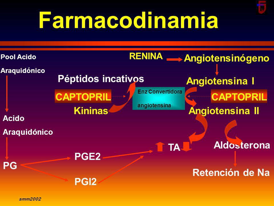 Farmacodinamia Angiotensinógeno Péptidos incativos Angiotensina I