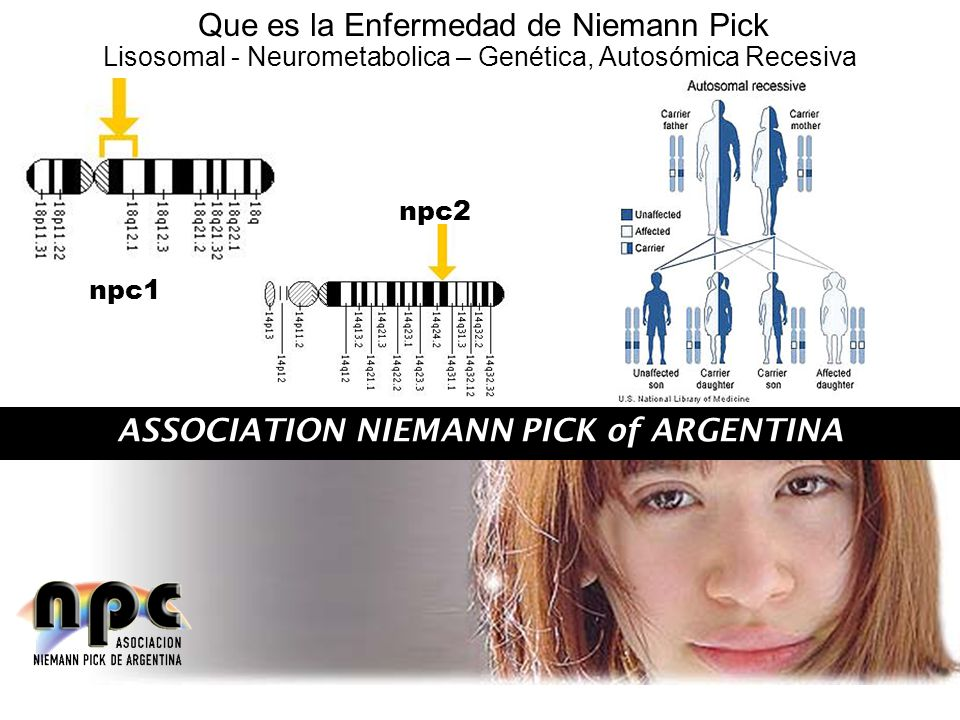 ASSOCIATION NIEMANN PICK of ARGENTINA