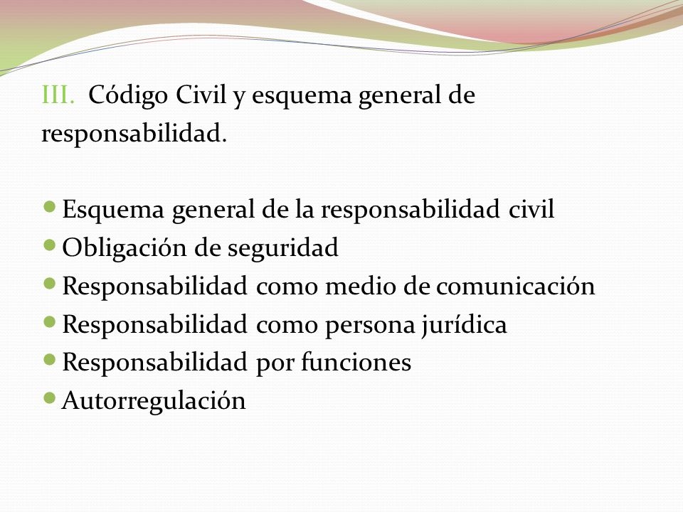 III. Código Civil y esquema general de