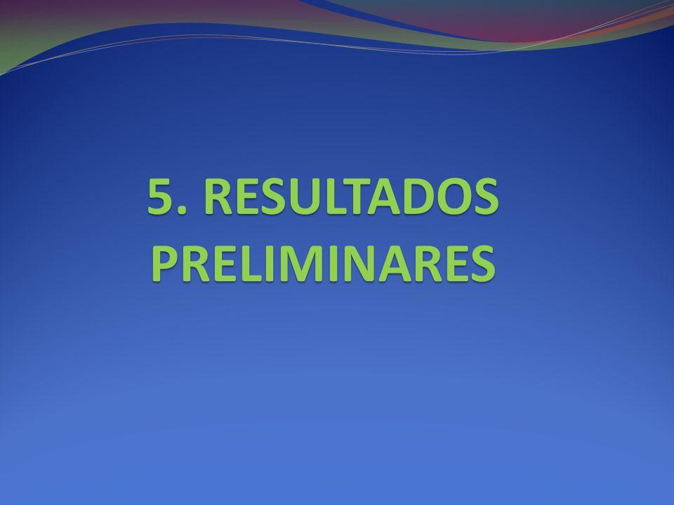 5. RESULTADOS PRELIMINARES