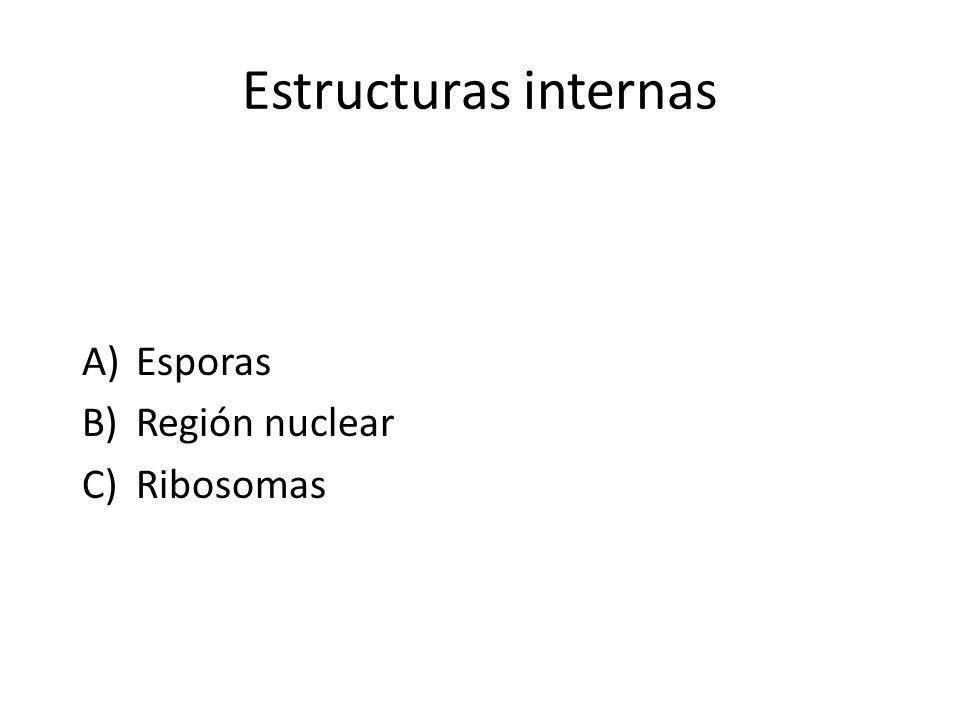 Estructuras internas Esporas Región nuclear Ribosomas