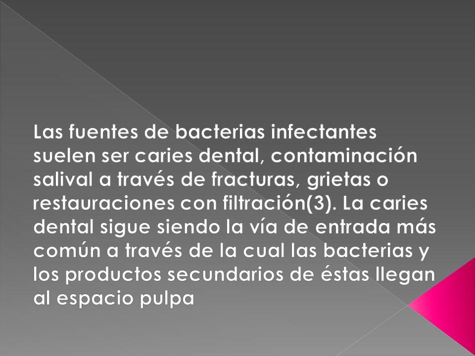Las fuentes de bacterias infectantes suelen ser caries dental, contaminación salival a través de fracturas, grietas o restauraciones con filtración(3).