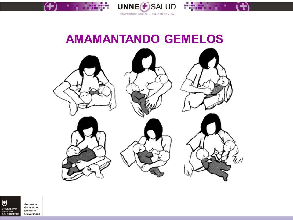 AMAMANTANDO GEMELOS