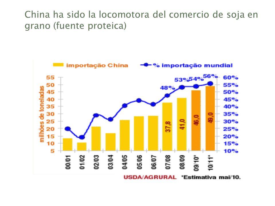 China ha sido la locomotora del comercio de soja en grano (fuente proteica)