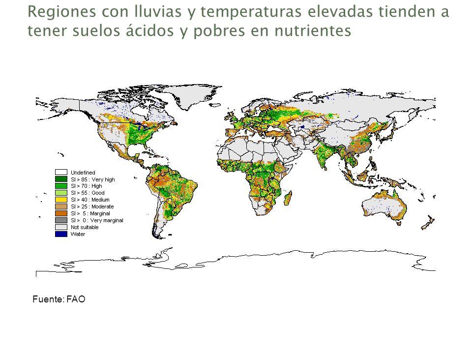 Regiones con lluvias y temperaturas elevadas tienden a tener suelos ácidos y pobres en nutrientes