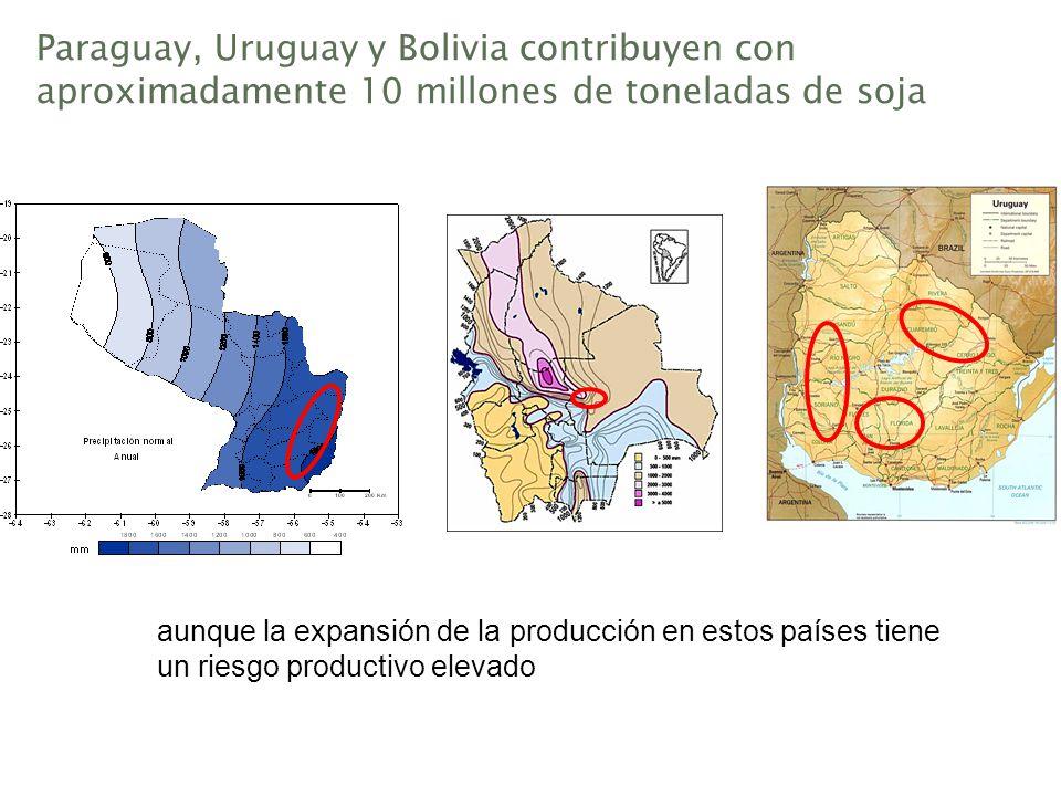 Paraguay, Uruguay y Bolivia contribuyen con aproximadamente 10 millones de toneladas de soja