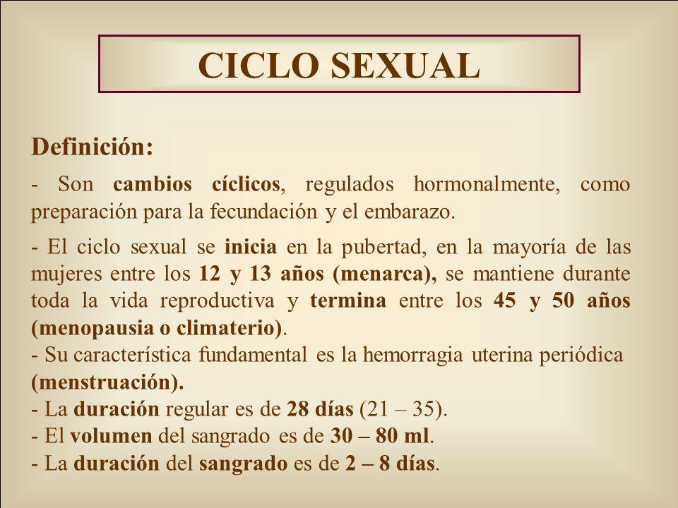 CICLO SEXUAL Definición: