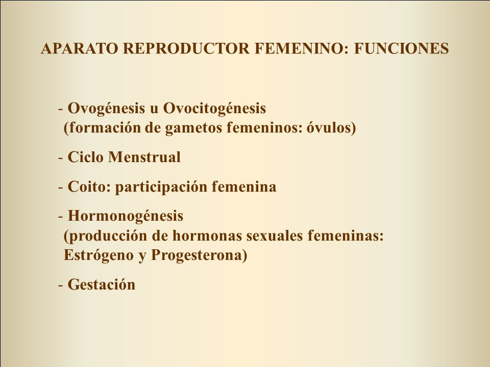 APARATO REPRODUCTOR FEMENINO: FUNCIONES