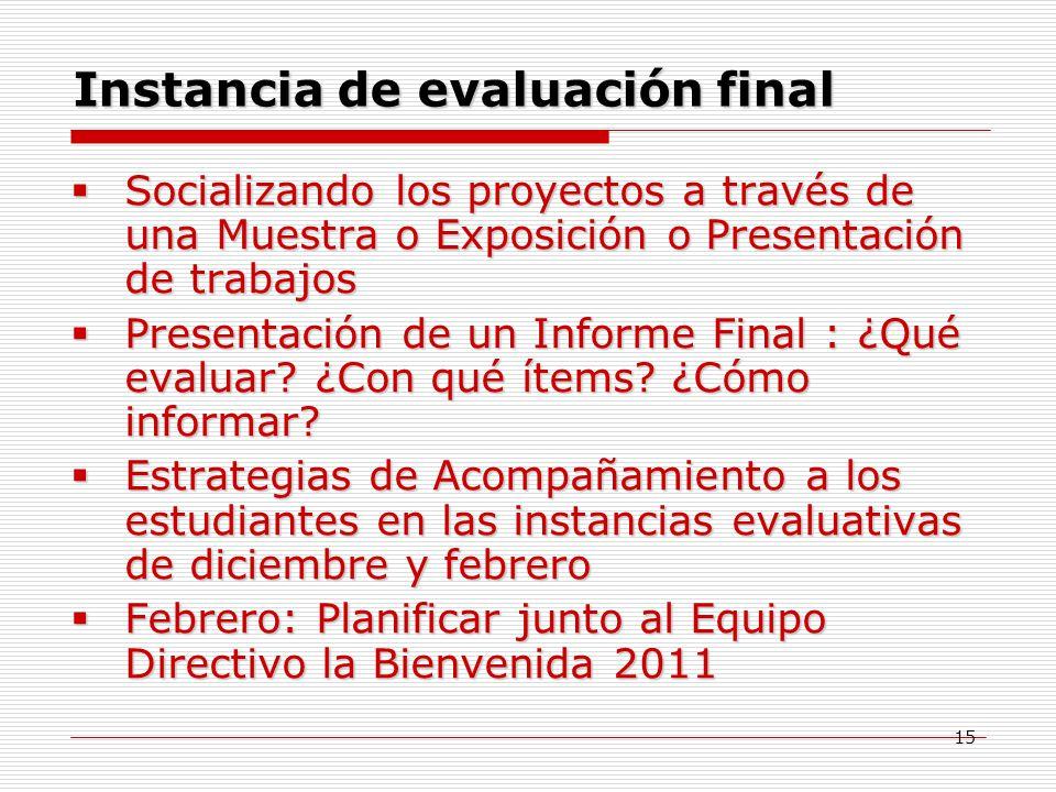 Instancia de evaluación final