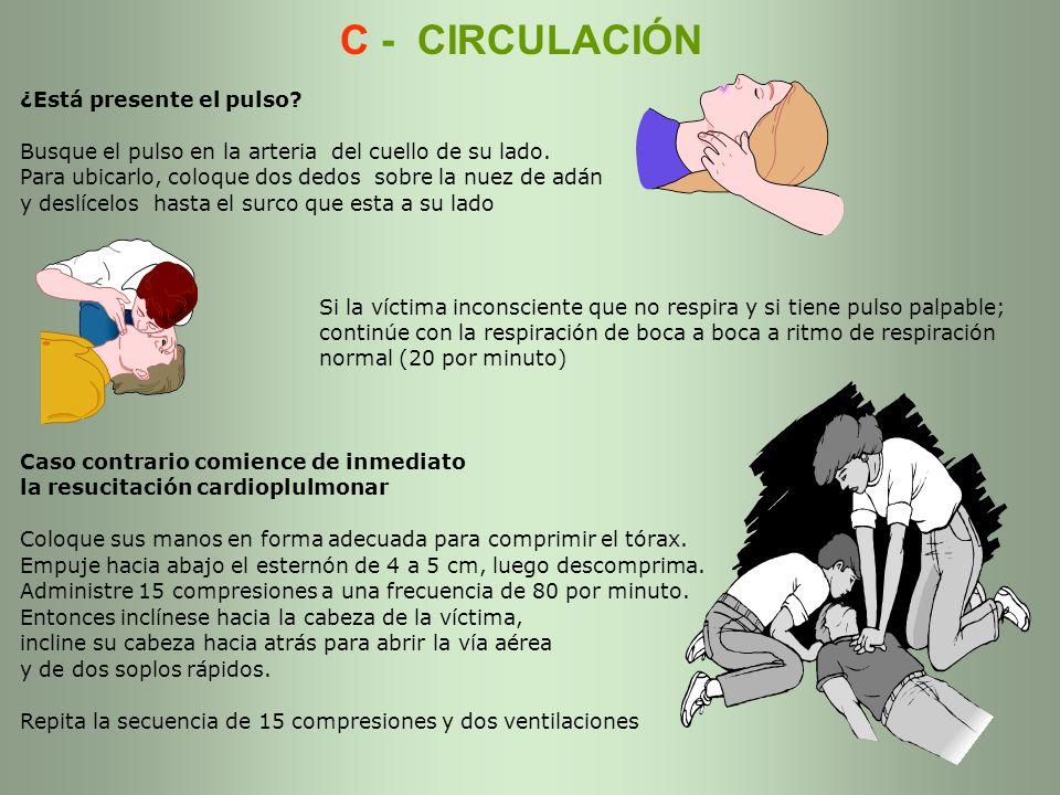 C - CIRCULACIÓN ¿Está presente el pulso