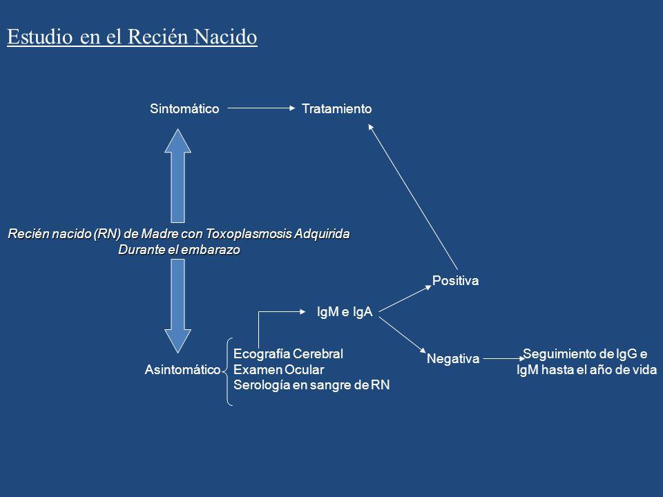 Recién nacido (RN) de Madre con Toxoplasmosis Adquirida