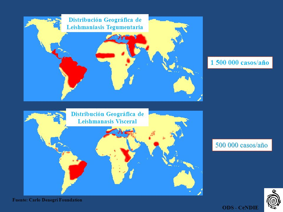 1 500 000 casos/año 500 000 casos/año Distribución Geográfica de