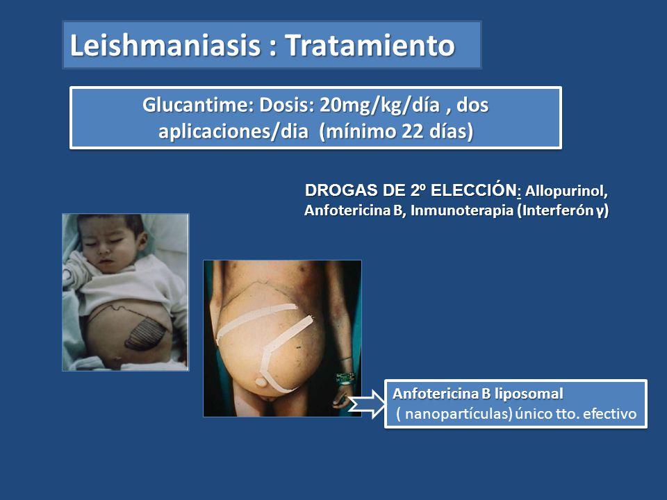 Glucantime: Dosis: 20mg/kg/día , dos aplicaciones/dia (mínimo 22 días)