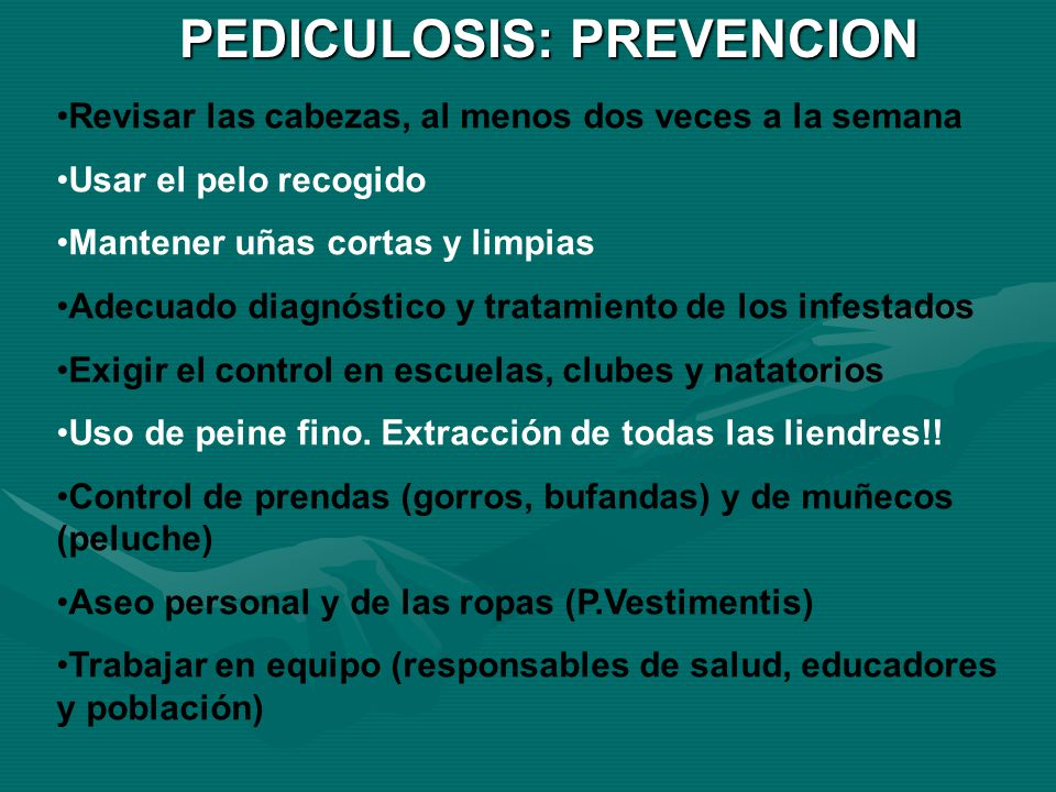 PEDICULOSIS: PREVENCION