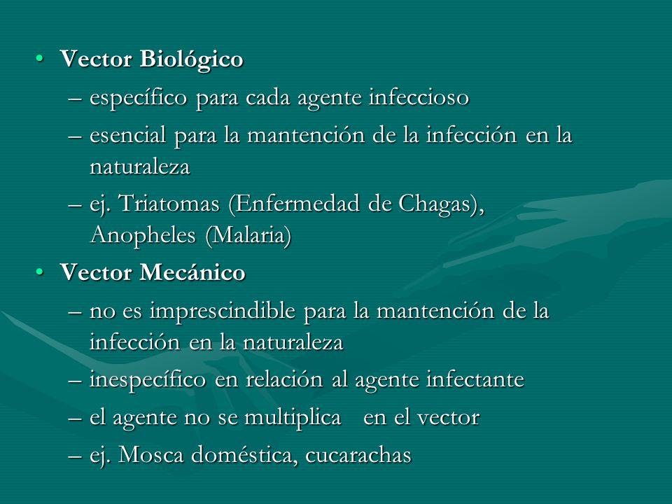 Vector Biológico específico para cada agente infeccioso. esencial para la mantención de la infección en la naturaleza.