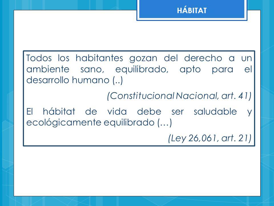 (Constitucional Nacional, art. 41)