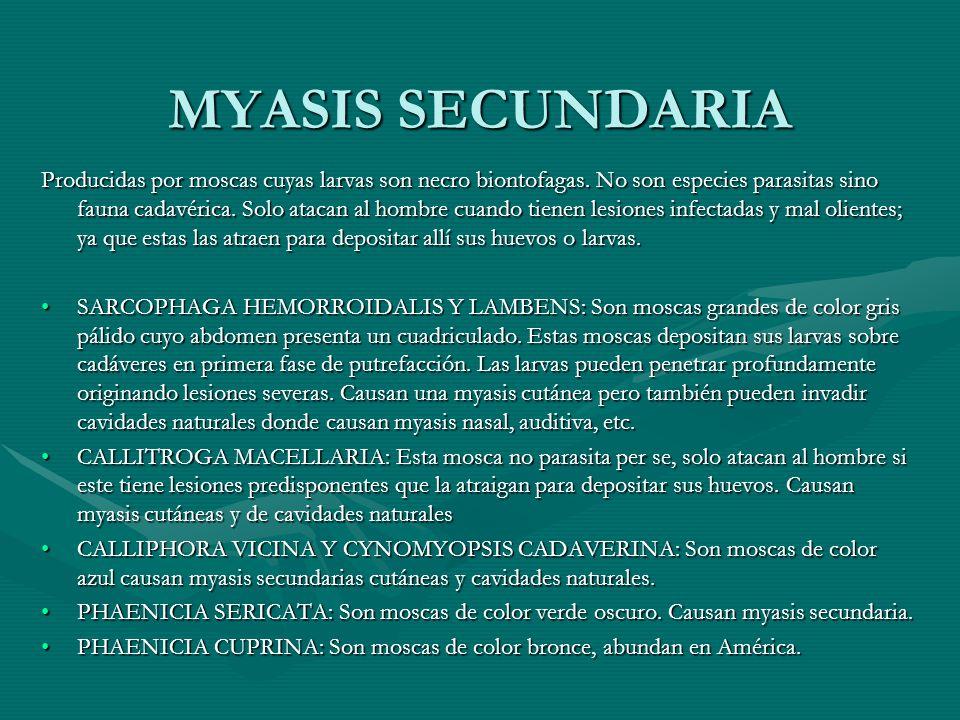 MYASIS SECUNDARIA