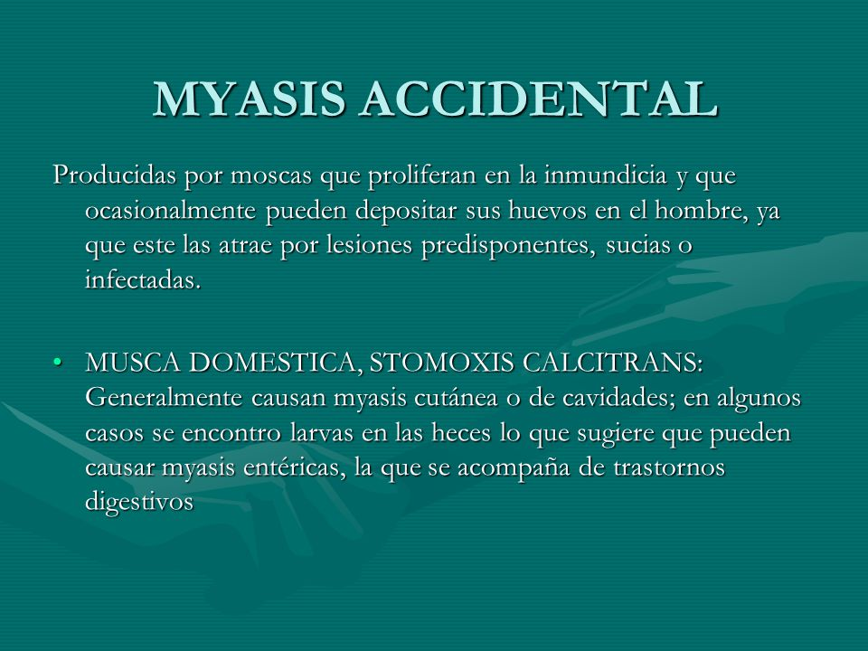 MYASIS ACCIDENTAL