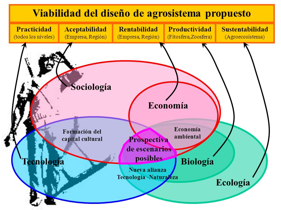 Viabilidad del diseño de agrosistema propuesto
