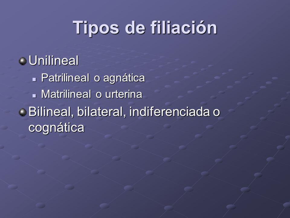 Tipos de filiación Unilineal