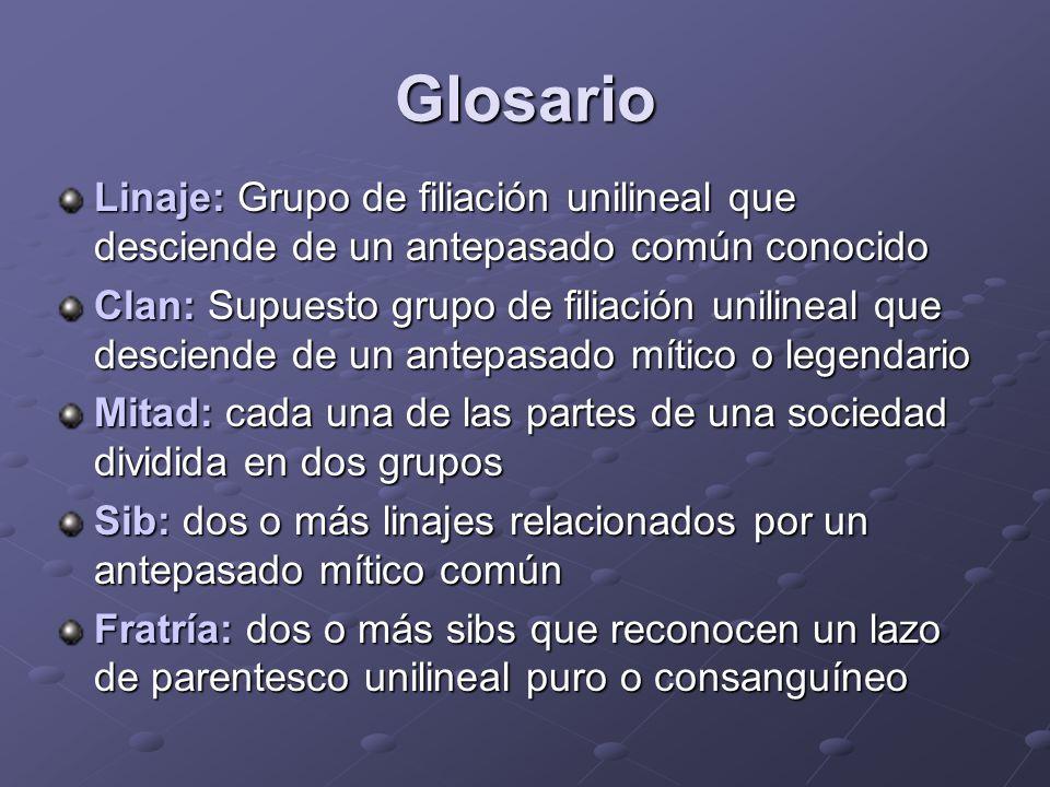 Glosario Linaje: Grupo de filiación unilineal que desciende de un antepasado común conocido.
