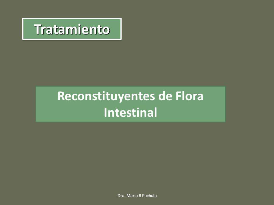 Reconstituyentes de Flora Intestinal