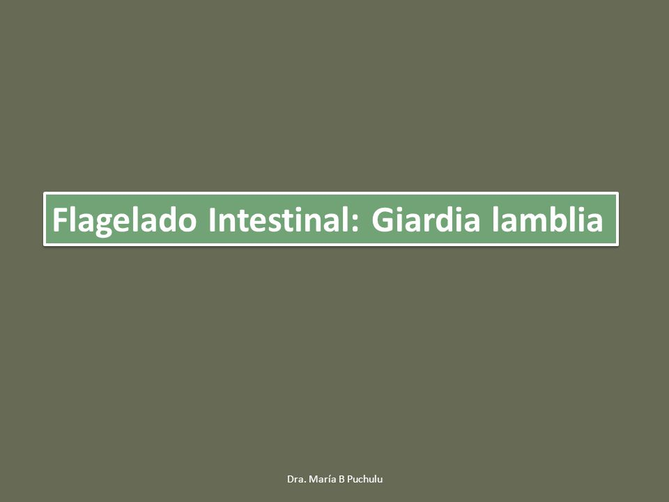 Flagelado Intestinal: Giardia lamblia