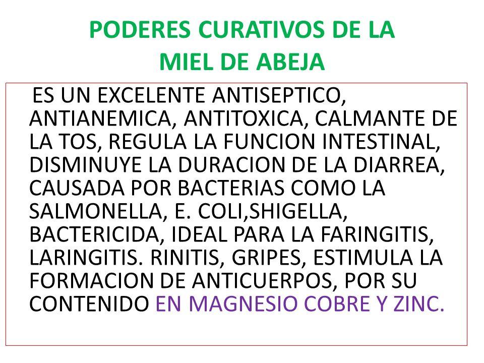 PODERES CURATIVOS DE LA MIEL DE ABEJA