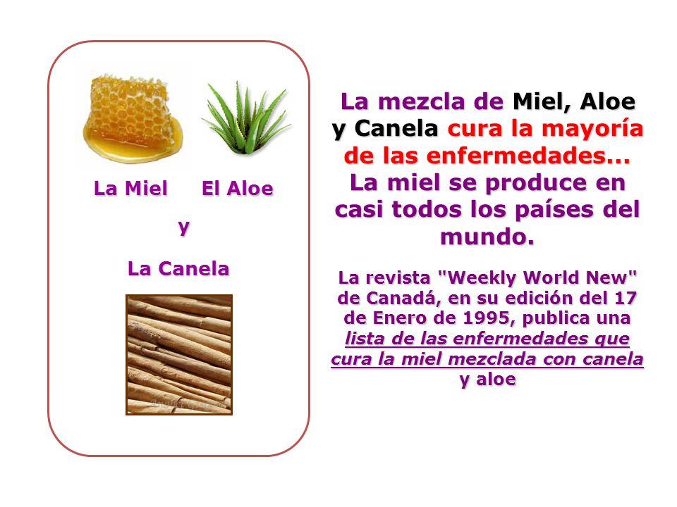 La mezcla de Miel, Aloe y Canela cura la mayoría de las enfermedades