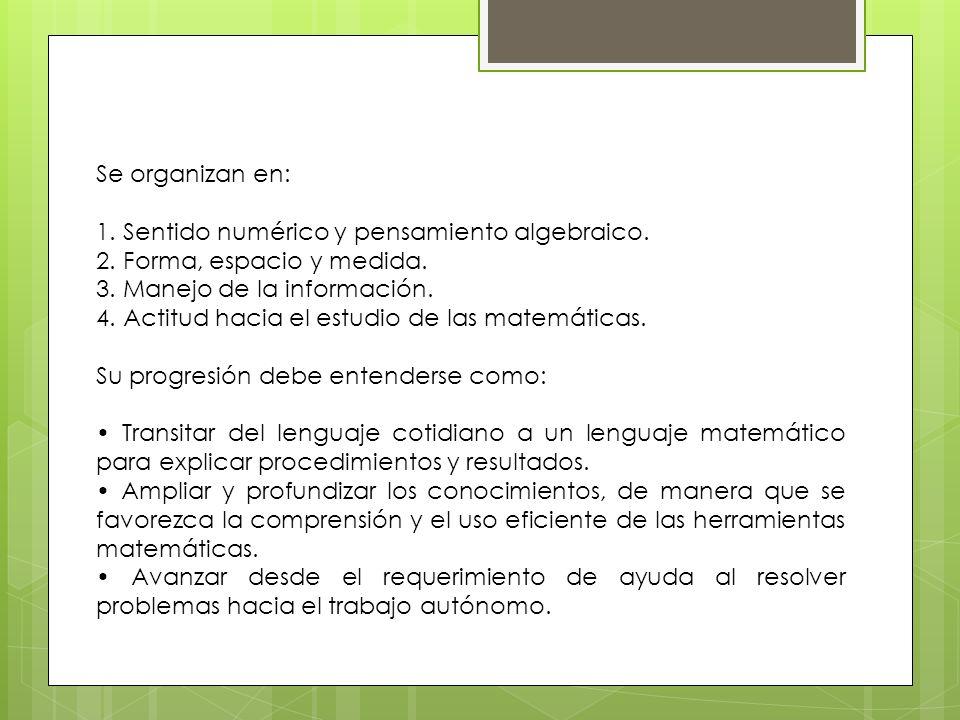 Se organizan en: 1. Sentido numérico y pensamiento algebraico. 2. Forma, espacio y medida. 3. Manejo de la información.