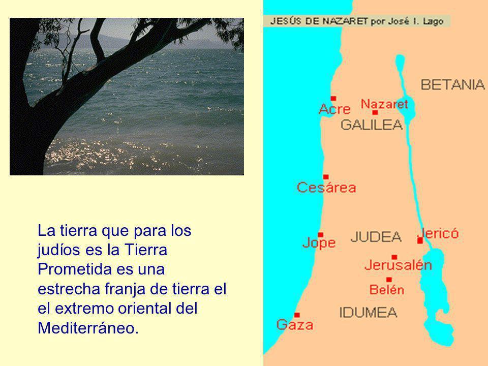 La tierra que para los judíos es la Tierra Prometida es una estrecha franja de tierra el el extremo oriental del Mediterráneo.