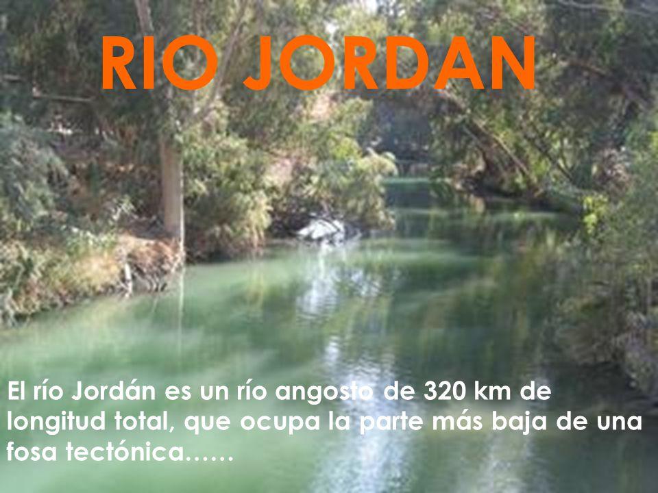 RIO JORDAN El río Jordán es un río angosto de 320 km de longitud total, que ocupa la parte más baja de una fosa tectónica……