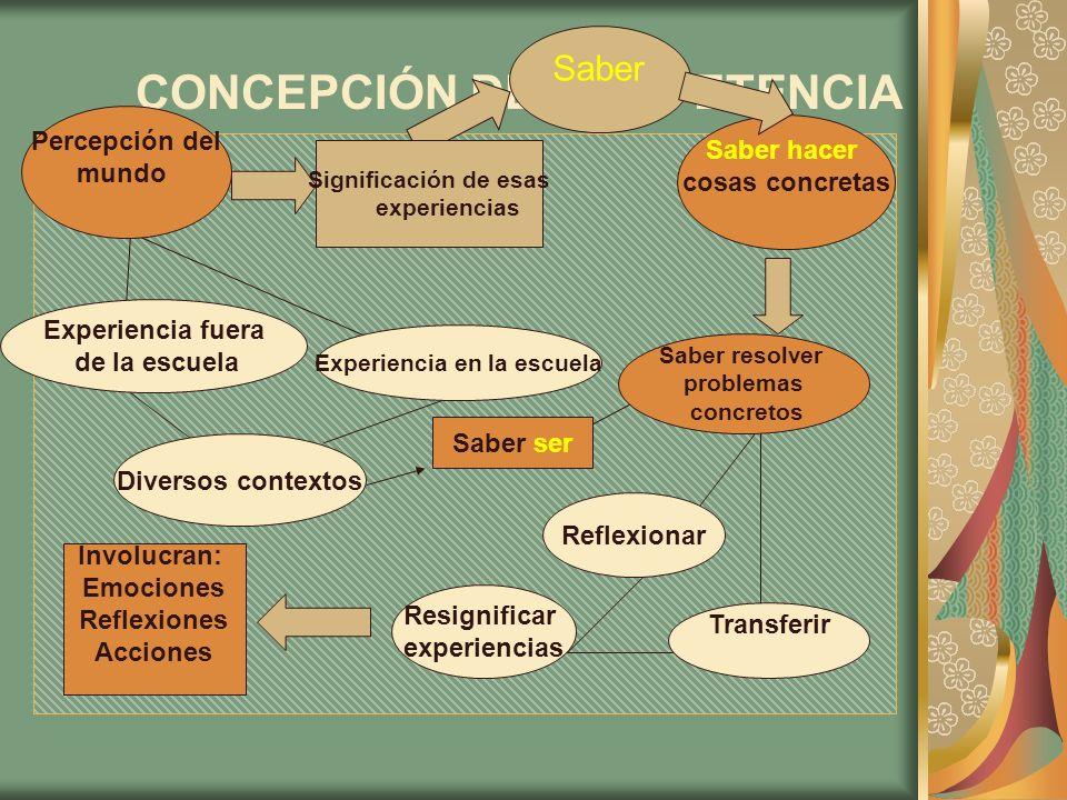 CONCEPCIÓN DE COMPETENCIA