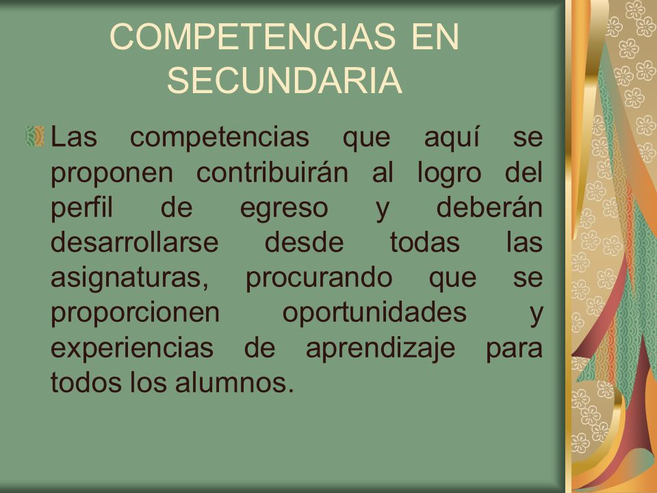 COMPETENCIAS EN SECUNDARIA