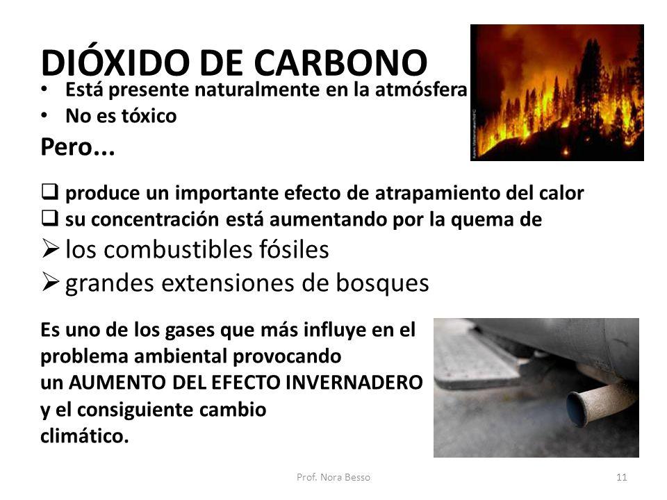 DIÓXIDO DE CARBONO Pero... los combustibles fósiles
